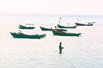 The fishing village Ham Ninh