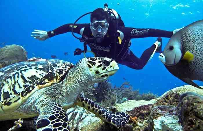 Phu Quoc Diving